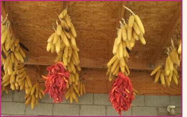 Modern Food   Pueblo Indian History for Kids